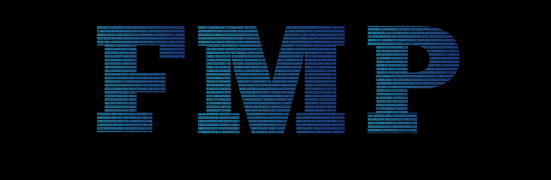 Les Services Informatiques FMP Inc.